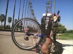San Bernadino, CA - quintessential palm-lined California boulevard.