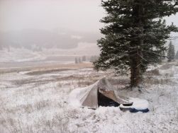 Camp at 9000 ft, Bighorn Mtns, WY
